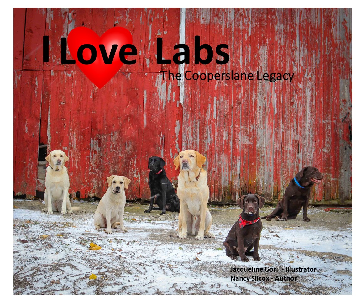 i-love-labs-the-cooperslane-legacy-front-cover